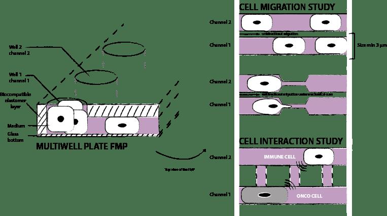 microchannels