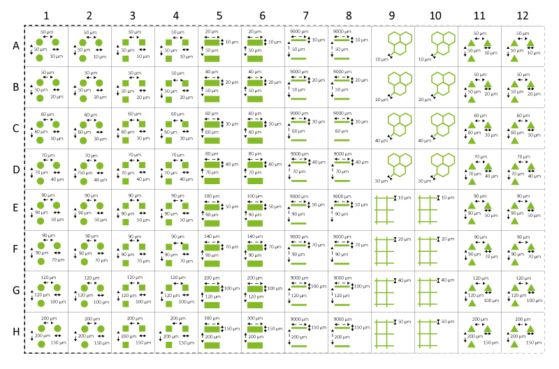 Micropatterned 96 well plates