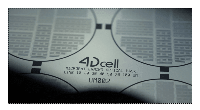 4Dcell micropatterning quartz mask