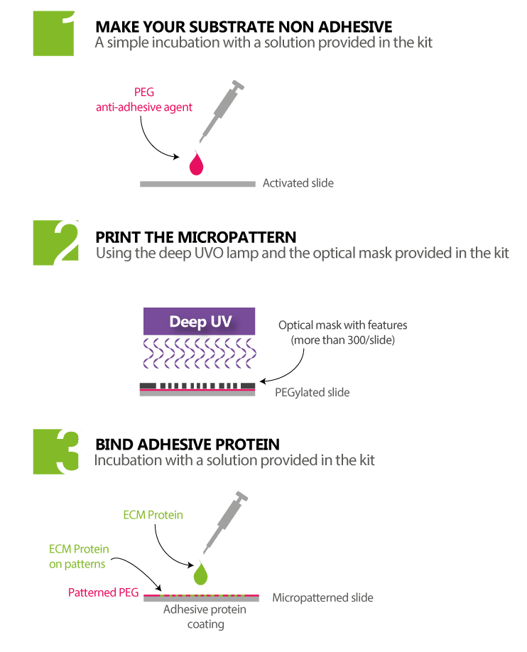 Principle-3steps-micropatterning