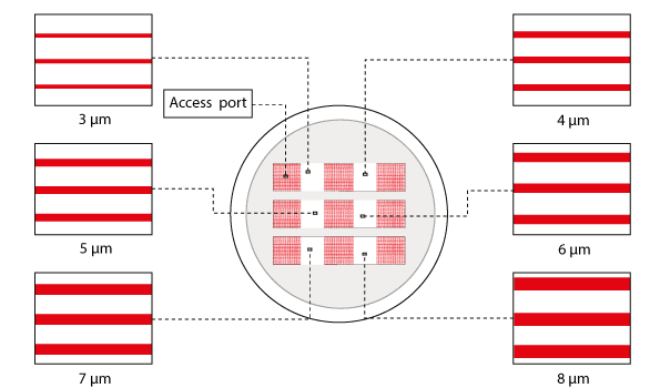 Small microchannels cell migration
